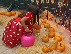A child picks a pumpkin at a fall festival.